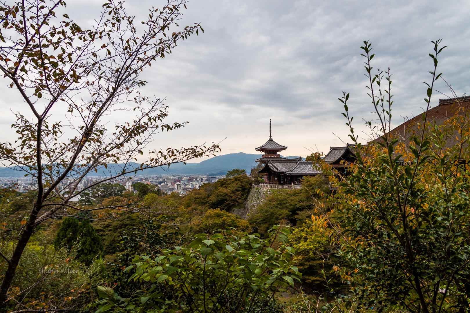 Buddhist temple on a hill from a nearby perspective with the view surrounded by bushes and trees; a city below and mountains in the distance